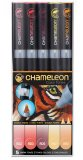 Набор маркеров Chameleon Color Tones Pen Packs Warm Tones 5 штук